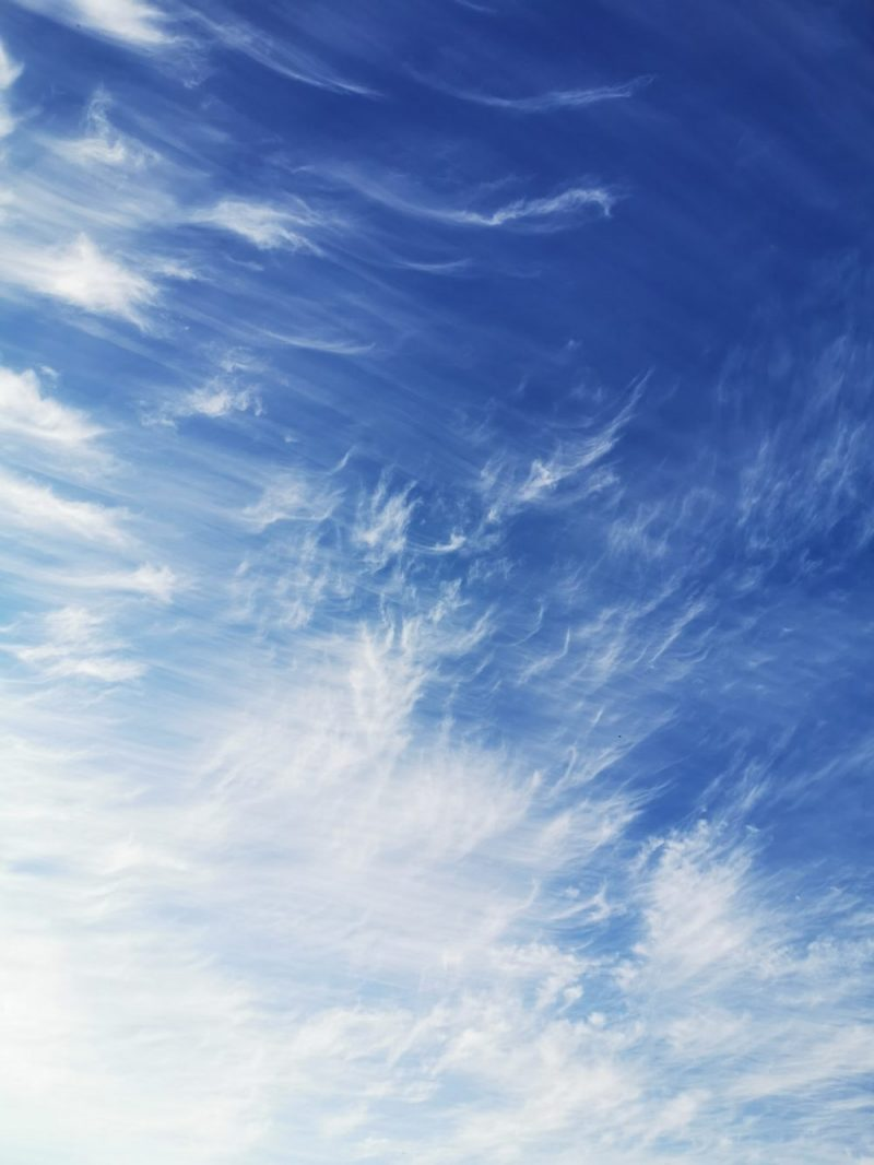 Tiny peices of sky